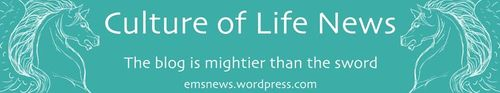 Word press culture of life news
