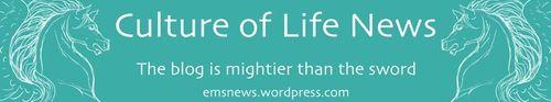 Word press culture of life news