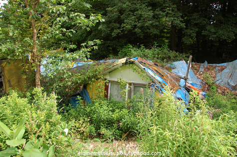 Second_bedroom_of_tent_complex