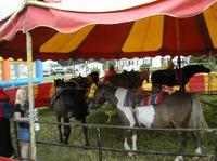 Pony_go_round_