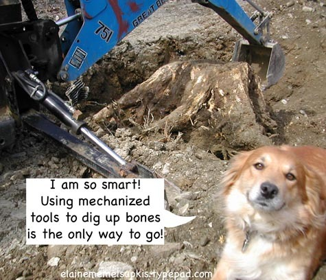 Puppy_with_big_backhoe_digging_bo_2