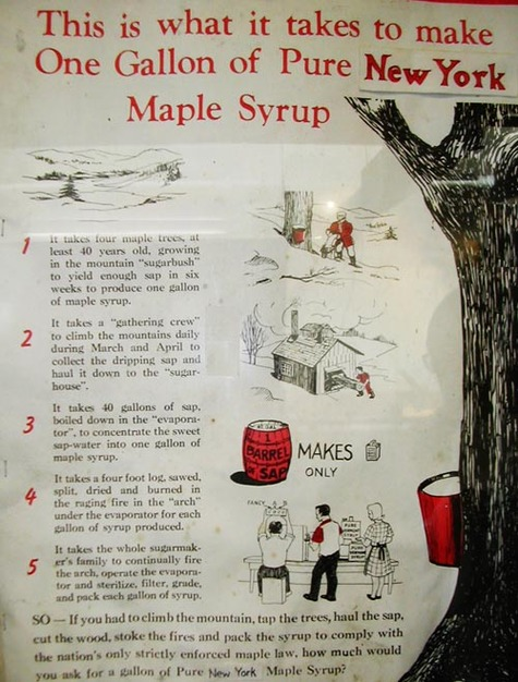 How_to_make_maple_syrup_2