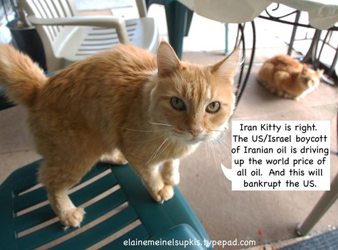Iran_kitty_is_right_about_oil_pri_2