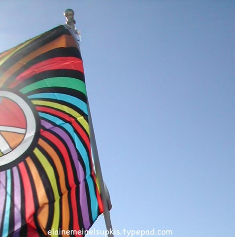 Peace_flag_dc