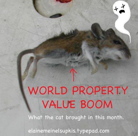 Dead_mouse_big