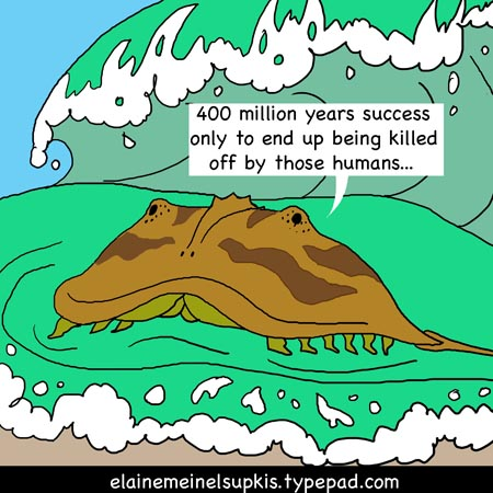 Horseshoe Crab Attack Earth Day Horseshoe Crabs And