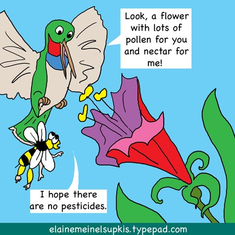 Hummingbirds_and_bees