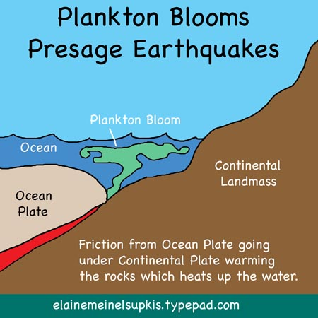 Plankton_blooms_before_earthquakes_big_1