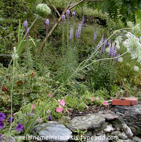 Rock_garden_big