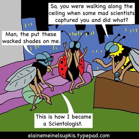 Scientologist_flies_big_1